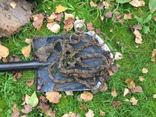В болоте обнаружилась собачья цепь