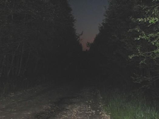 А еще суровей смоленские дороги ночью