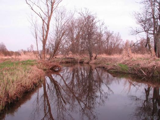 Гадюкинская река. Несудоходна