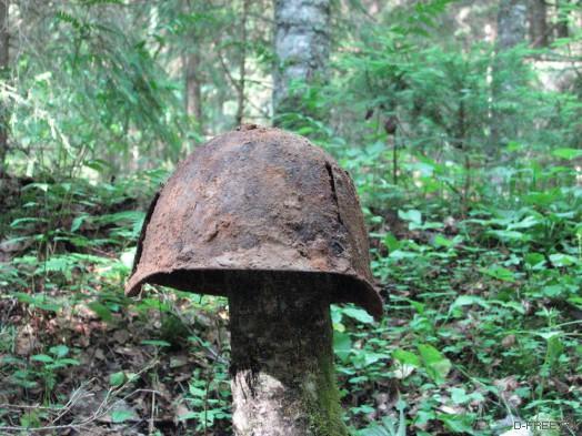 Железная шапка