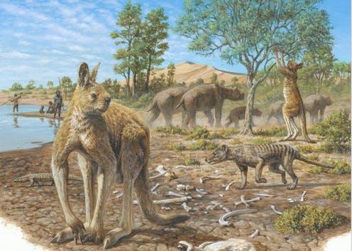 мегафауна австралии
